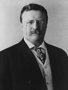 Yes. That Theodore Roosevelt.