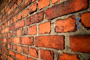 A brick wall that won't listen to any of your ideas and gets really upset when you question it.